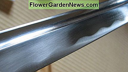 Katana blade protected with a thin coating of choji oil.