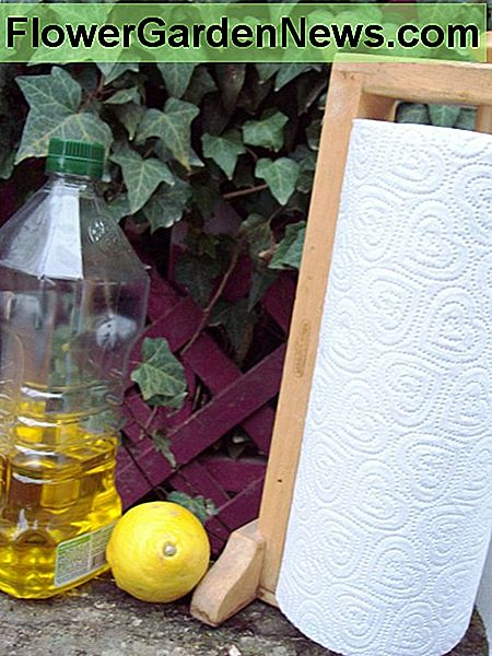 All you need is olive oil, a lemon, and paper towels.