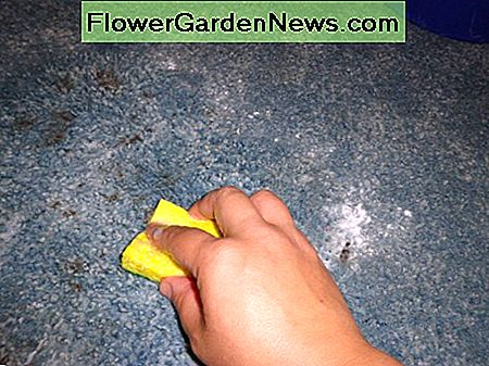 keep scrubbing and mixing the baking soda and vinegar water mixture into the carpet