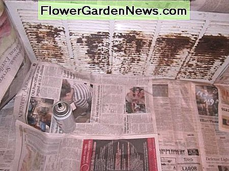 Spread newspapers out to protect carpet and walls.