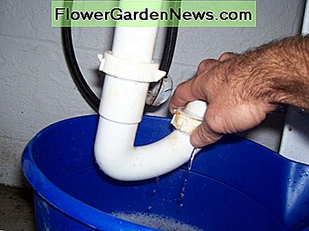 Drain the water from the trap nut slowly and keep an eye on the water level in your bucket.