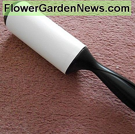 A lint roller will remove dog hairs from a small area quickly