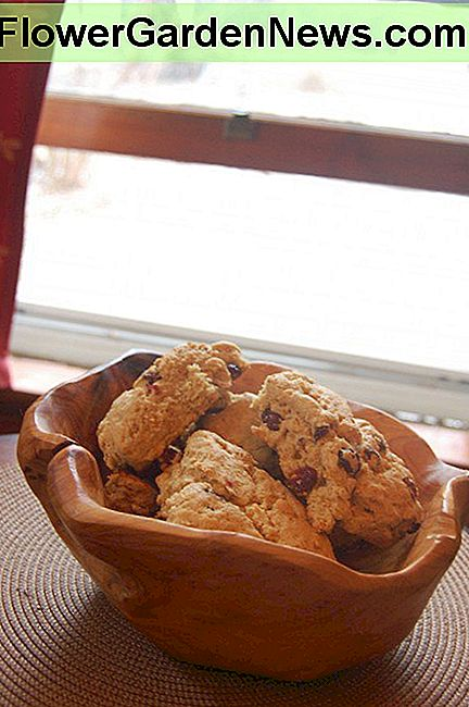 Rustic wooden bowl filled with scones.