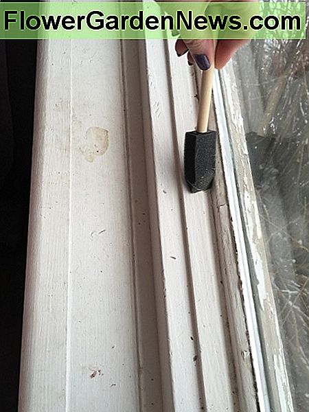 Cleaning bedroom window sill.