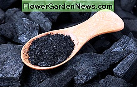 Activated charcoal absorbs the most unpleasant odors.