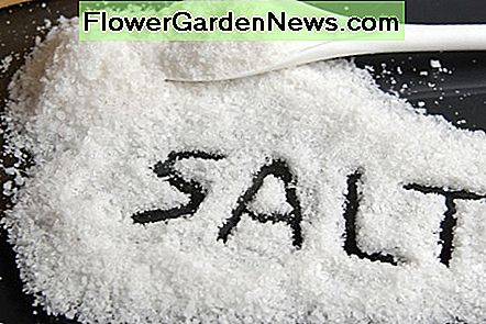 Salt is the cheapest natural cleaning product that is available in every kitchen.