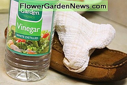White vinegar is another way to naturally clean your suede shoes.