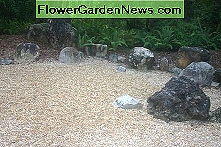 My favorite aspect of the Zen garden and dry garden is looking over the stones to a natural background.