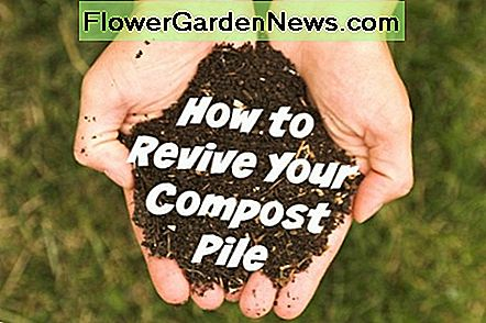 How to Revive Your Compost Pile