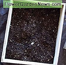 Fill the crate with potting soil and soil amendments.