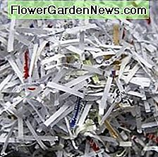 Shredded Paper Bedding