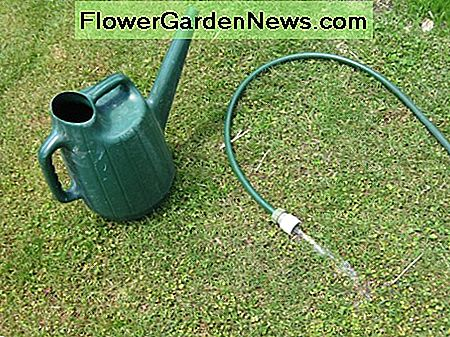Watering can and garden hose.