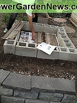 The purpose of the newspaper and cardboard is to block grass and weeds. We added the rotting lumber simply to recycle.