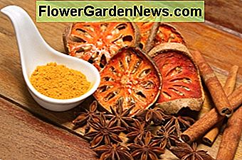 aromatic herbs, spices, fruits and essential oils