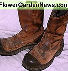 Old discarded boots or shoes are the base for your flower pot