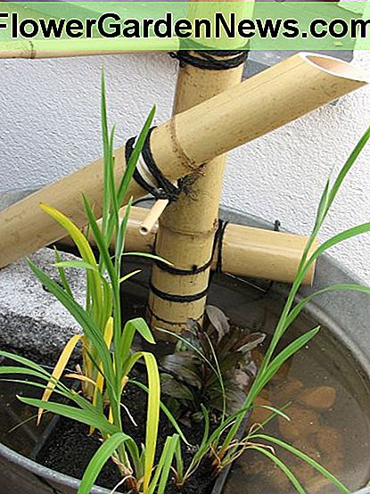 A little feature creep - a homemade Japanese water fountain!