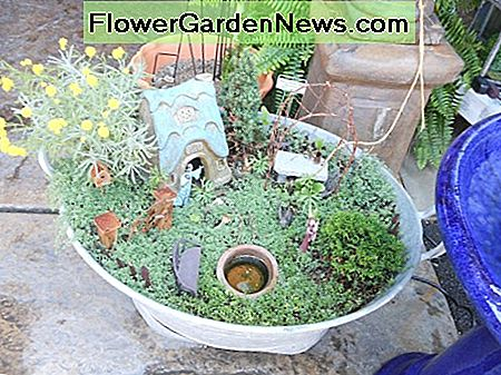 Fairy garden ideas.