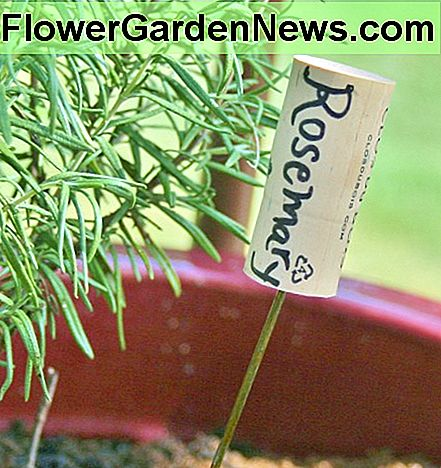 An old wine bottle cork, a bit of coat hanger wire & a Sharpie are all you need to make this cute plant marker.