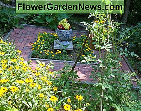 Our gardens mix veggies and herbs with native and ornamental plants