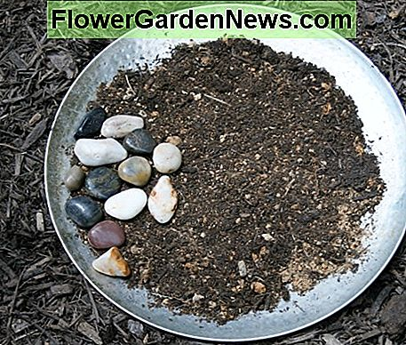 I arranged some river rocks on the soil to give the butterflies places to perch.