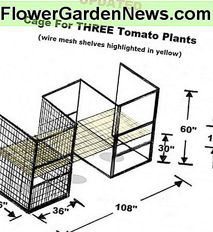 UPDATED drawing by Robert Kernodle of the homemade three-compartment tomato cage.
