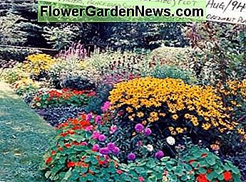 Mixed Flower Garden has many perennials of varied colors