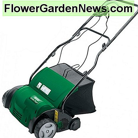 An electric scarifier makes light work of removing moss and other dead vegetation from lawns.