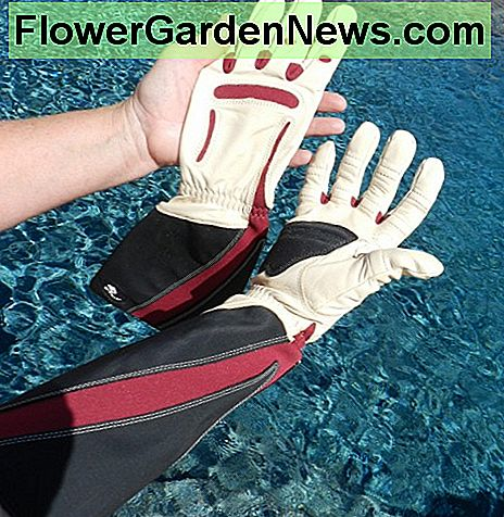 My favorite garden gloves. They also come in wrist length.