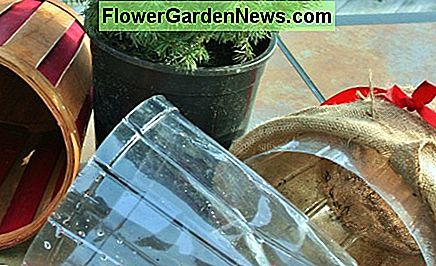 Plastic liners need to go, whether you're replanting or not.
