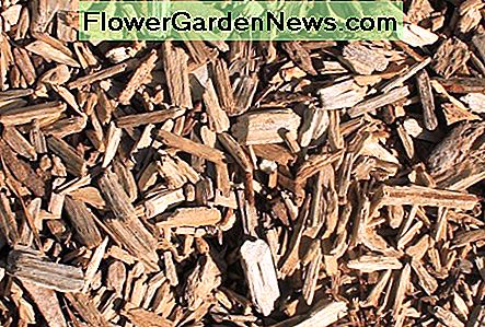 Mulch adds protection to garden soil.