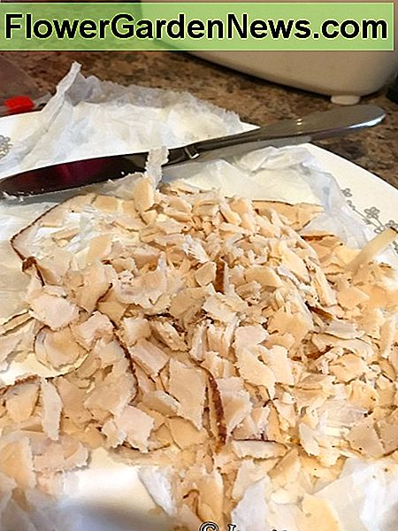 First I cut up the expired chicken lunch meat into small pieces, which will more easily break up inside the composting system.