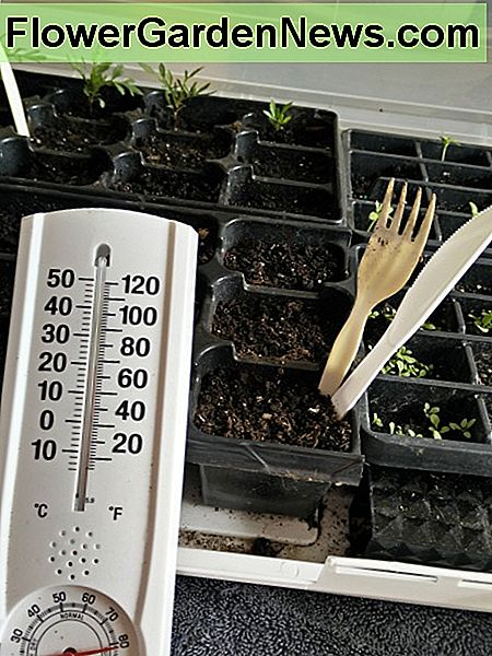 65-70 degrees is the optimum temperature range for quickly sprouting seedlings. Higher Humidity levels are ideal to help this process along.