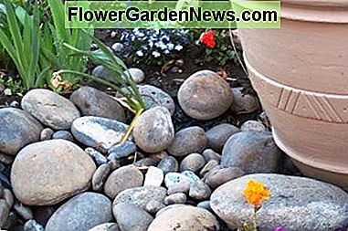 Landscaping with natural river bed rock. Plants shown are: Iris, Marigold, Petunia, Lobelia, and Geranium. This natural riverbed rock was taken from the ground on the property. The Moses Lake area was once under the Columbia river.