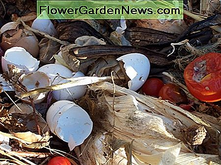 Some items for composting
