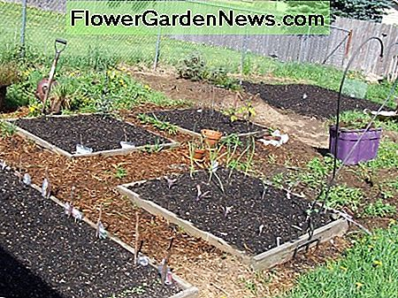 A garden with healthy soil thanks to composting