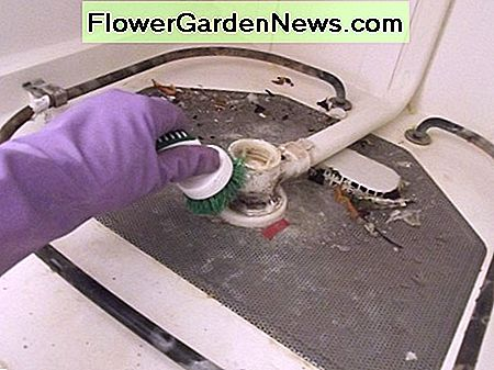Scrub the bottom of the dishwasher to dislodge debris and mineral deposits.