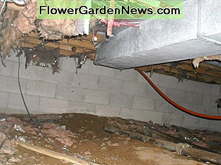 Uninsulated ductwork in an unconditioned crawlspace lacks efficiency.