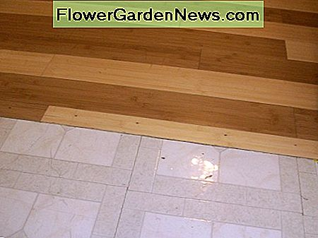 No trim; the tile floor was previously raised and required only careful cutting to match.