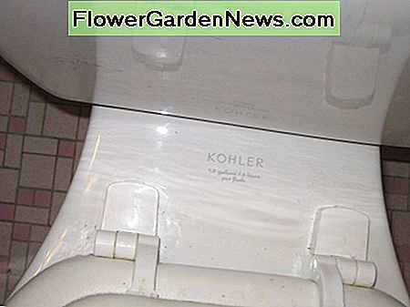 Another common area for the name and type of toilet is between the seat and the tank. This often fades due to age and cleaning.