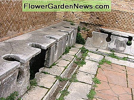 Ancient public Roman toilets. You probably won't be fixing one of these!
