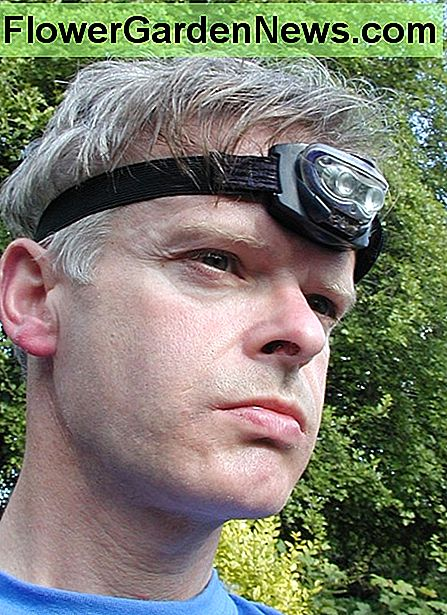 A head torch is great for working in low light conditions and keeps your hands free
