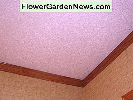 Our original popcorn ceiling.