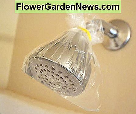 Wrap a plastic bag filled with white vinegar around the shower head and fasten with a thick rubber band or bag tie.
