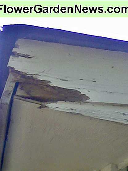 Eaves and Fascia Board Repair: Hoe (niet) om ze te repareren