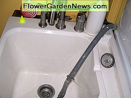 Laundry Sink: Use enzymes and lint catcher in washing machine sink drain.