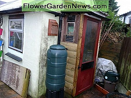 The old inner porch door recycled as new door for my garden tool shed