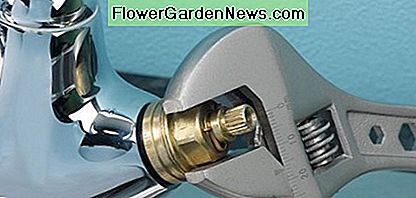 Remove the valve from the tap by using an adjustable spanner.