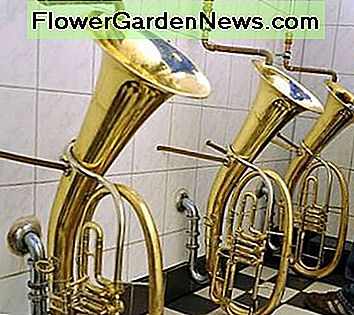 Tuba shaped urinals provide musical inspiration as you visit the restroom. No, they don't play music as you go!