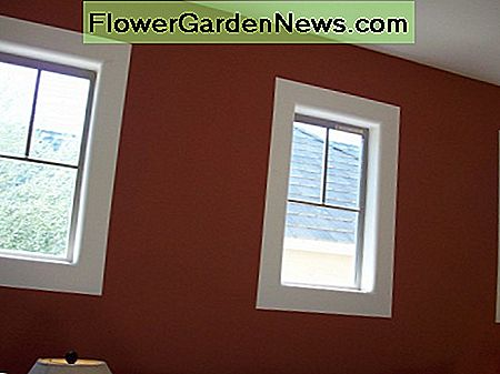 A light colored border is painted around these windows. The light color makes the window look larger.