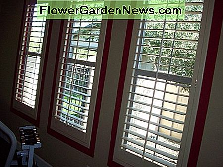 Even large windows with shutters or blinds can be surrounded by a colored paint border.